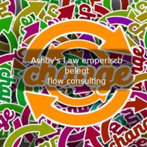 Ashby's Law empirisch belegt